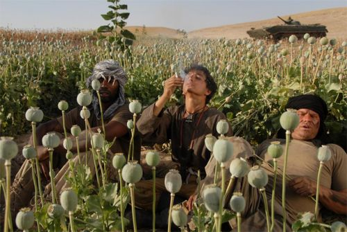 From the 2008 film, Opium War