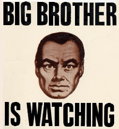 bigbrother cropd fixd (246 x 267)