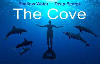 the cove logo2