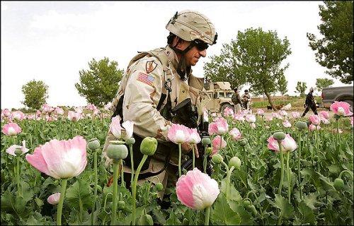 CIA DRUGS