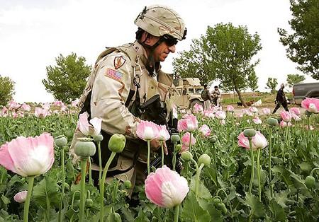 afghan us opium x RAWA