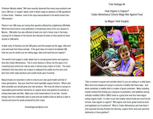 essay 4 front and back flyer