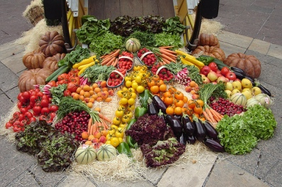 Image result for Boosting food security via biotechnology